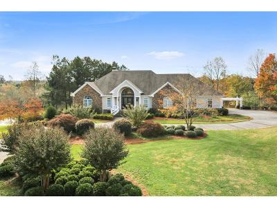 Dawsonville Single Family Home For Sale: 260 Gold Leaf Terrace