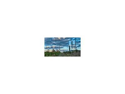 Atlanta Condo/Townhouse For Sale: 3630 Peachtree Road NE #2104