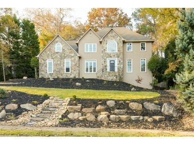 Roswell Single Family Home For Sale: 4648 Clary Lakes Drive NE