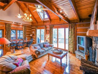 Big Canoe Single Family Home For Sale: 423 Ridgeview Drive