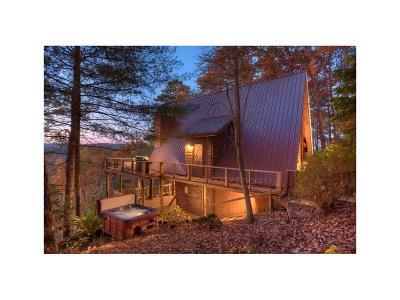 Blue Ridge Single Family Home For Sale: 83 Laurel Ridge Court