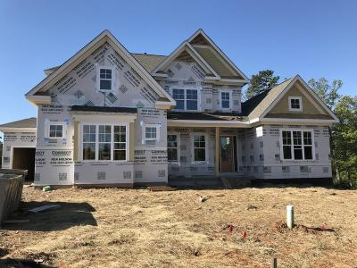 Forsyth County Single Family Home For Sale: 5235 Regency Point Drive