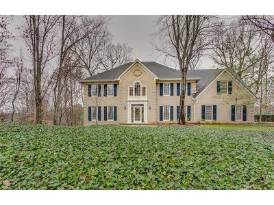 Single Family Home For Sale: 345 Cameron Ridge Drive