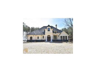 Buford Single Family Home For Sale: 2852 Thompson Mill Road