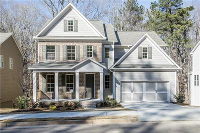 Acworth Single Family Home For Sale: 829 Tramore Road