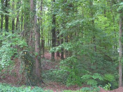 Kennesaw Residential Lots & Land For Sale: 3779 Hardee Drive