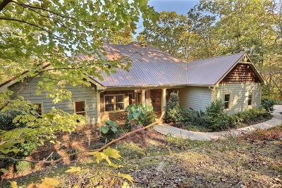 Ellijay Single Family Home For Sale: 790 Old Burnt Mountain Road