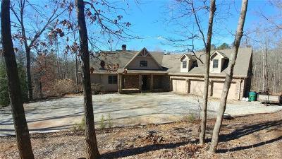 Dawsonville Single Family Home For Sale: 1720 Goldmine Road