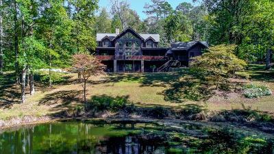 Alpharetta, Atlanta, Dunwoody, Johns Creek, Milton, Roswell, Sandy Springs Single Family Home For Sale: 8900A Island Ferry Road