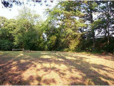 Smyrna Residential Lots & Land For Sale: 2451 N Mathews Street SE