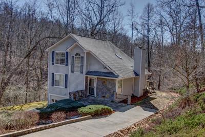 Dawsonville Single Family Home For Sale: 199 Herman Sosebee Road
