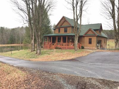 Ellijay Single Family Home For Sale: 95 Deer Lake Drive