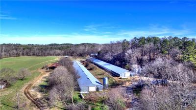 Adairsville Single Family Home For Sale: 170 Folsom Glade Road NW