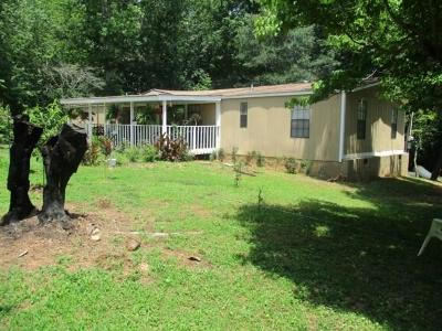 Acworth Single Family Home For Sale: 6340 Patricia Drive SE