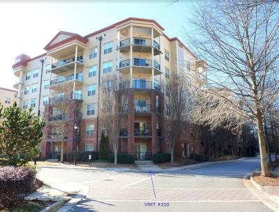 Atlanta Condo/Townhouse For Sale: 200 River Vista Drive #210