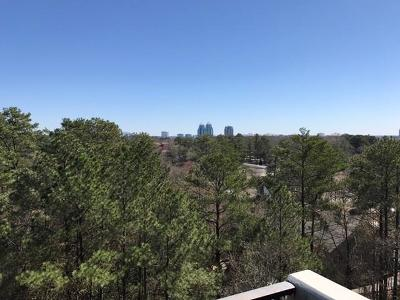 Sandy Springs Condo/Townhouse For Sale: 300 Johnson Ferry Road #A809