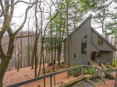 Big Canoe Single Family Home For Sale: 1670 Petit Ridge Drive