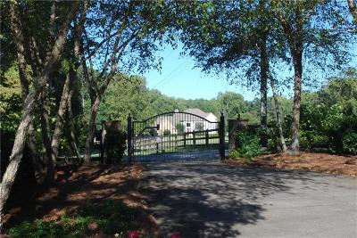 Powder Springs Single Family Home For Sale: 1790 Villa Rica Road
