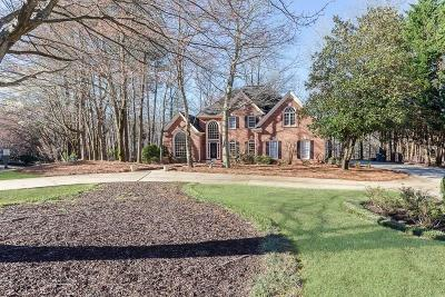 Alpharetta Single Family Home For Sale: 900 Waters Reach Court
