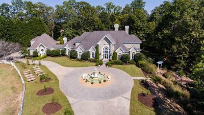Alpharetta, Milton Single Family Home For Sale: 15355B Tullgean Drive