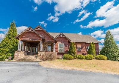 Rockmart GA Single Family Home For Sale: $1,299,000