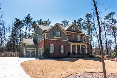 Roswell Single Family Home For Sale: 4658 Sandy Plains Road