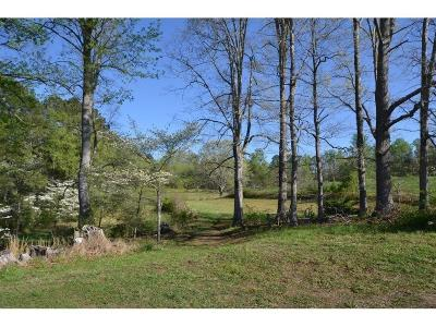 Talking Rock Land/Farm For Sale: 385 Dean Trail