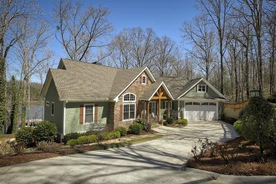 Dawsonville Single Family Home For Sale: 782 Chestatee Circle