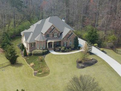 Alpharetta Single Family Home For Sale: 390 Creek Point