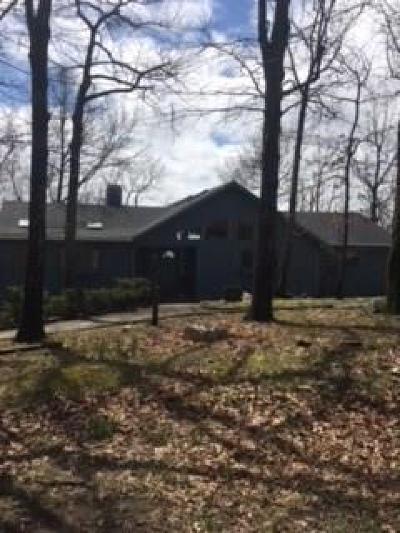 Jasper Single Family Home For Sale: 450 Big Stump Mountain Trail