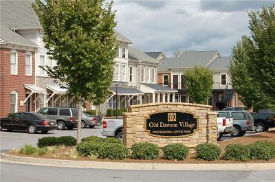Dawson County Commercial For Sale: 00 Old Dawson Village Road E