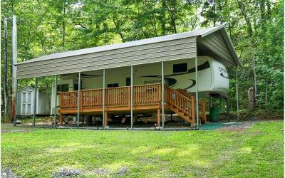 Towns County Single Family Home For Sale: 548 Gander Gap Road
