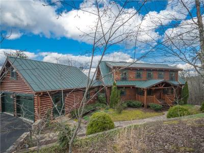 Pickens County Single Family Home For Sale: 8 Owl Ridge Way