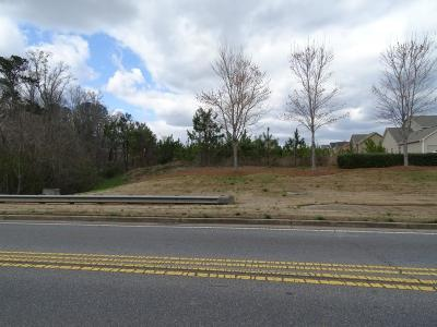 Canton GA Commercial For Sale: $350,000