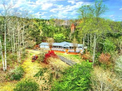 Canton Single Family Home For Sale: 1363 Pleasant Union Road