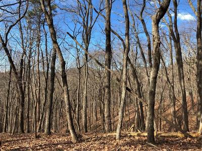 Bent Tree Residential Lots & Land For Sale: 3727 Shadowick Mountain Road