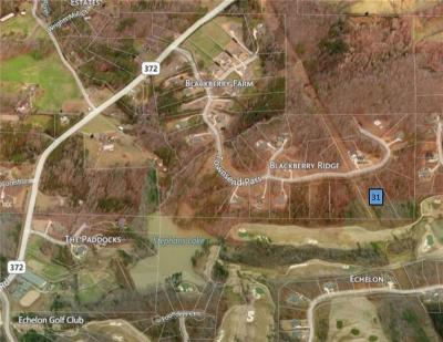 Alpharetta Residential Lots & Land For Sale: Lot 31 Townsend Pass