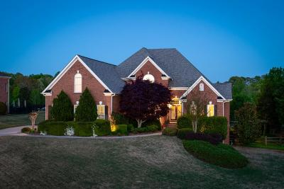 Dawsonville Single Family Home For Sale: 742 Gold Creek Drive