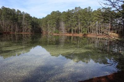 Newton County Single Family Home For Sale: 4621 Highway 162 S