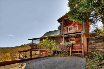 Ellijay Single Family Home For Sale: 375 Garrett Lane