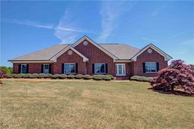 Stockbridge Single Family Home For Sale: 1100 Virginia Lee Lane