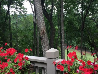 Pickens County Single Family Home For Sale: 139 Turnbury Lane