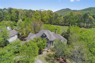 Marietta Single Family Home For Sale: 790 Parkside Trail NW