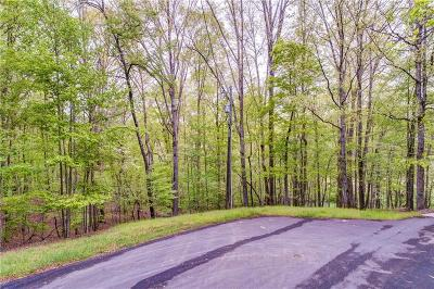 Lake Arrowhead Residential Lots & Land For Sale: 113 Diane Court