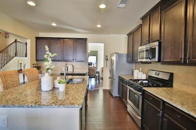 Canton Single Family Home For Sale: 603 Stonehurst Lane