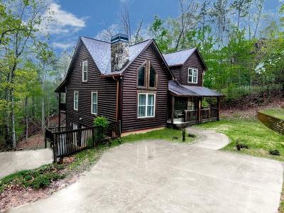 Ellijay Single Family Home For Sale: 600 Oneida Circle