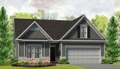 Canton Single Family Home For Sale: 255 Jefferson Avenue