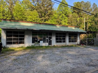 Pickens County Commercial For Sale: 3101 Highway 53 E