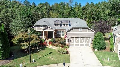 Canton Single Family Home For Sale: 202 Big Meadows Court