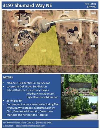 Marietta Residential Lots & Land For Sale: 3197 Shumard Way
